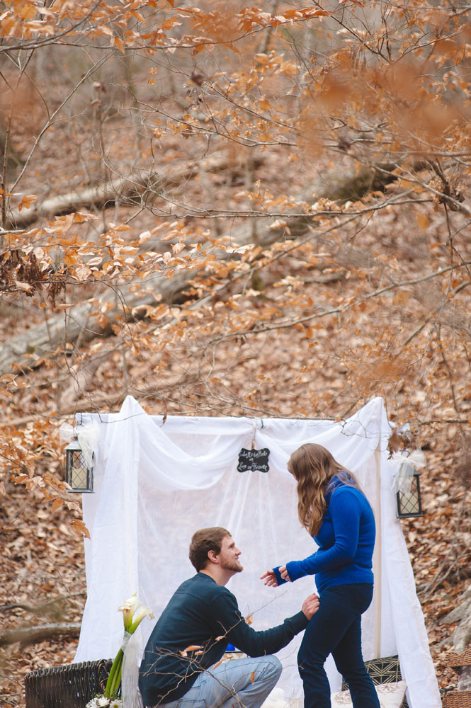 newberry, sc proposal photography