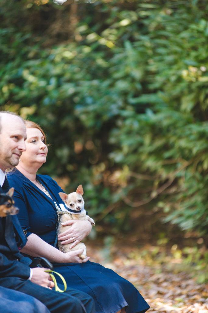 hendersonville-nc-wedding-photographer-054