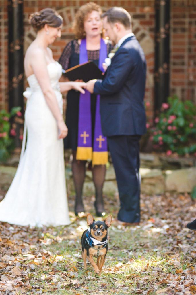 hendersonville-nc-wedding-photographer-058